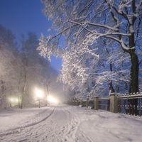 Бесплатные фото зима,ночь,парк,снег,фонари,свет,дорога