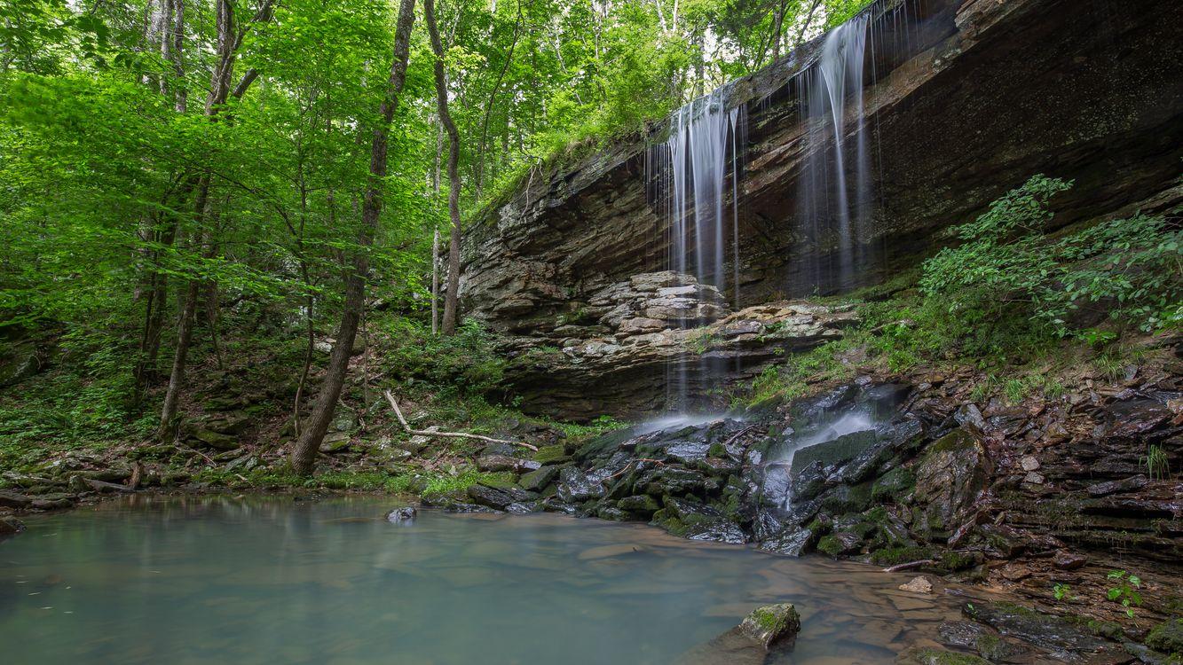Фото бесплатно лес деревья, скалы, водопад - на рабочий стол