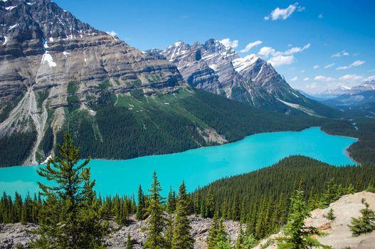 Фото бесплатно Banff National Park, небо, деревья