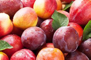 Фото бесплатно Слива спелые и сочные фрукты на деревянный стол, еда, ягоды
