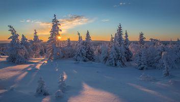 Фото бесплатно панорама, зима, закат