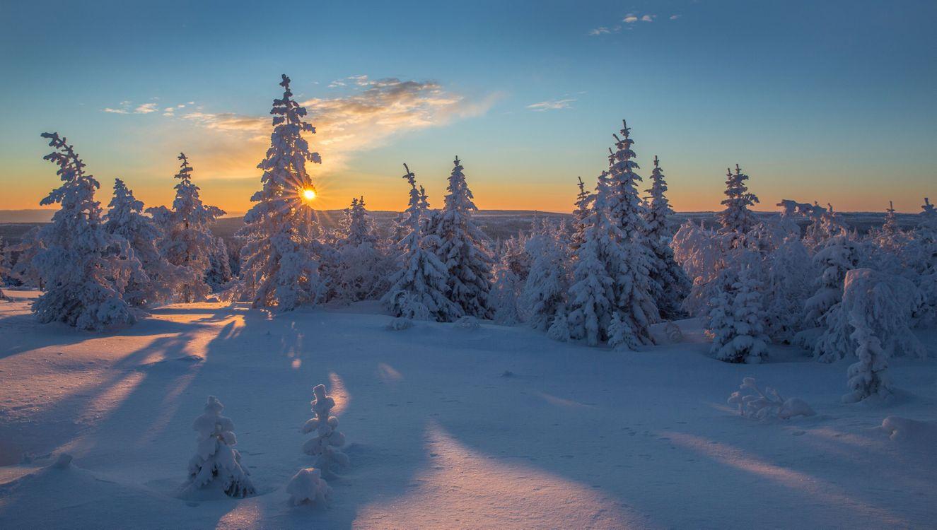 Обои зима, закат, снег, деревья, солнечные лучи, сугробы, природа, пейзаж, панорама на телефон   картинки пейзажи