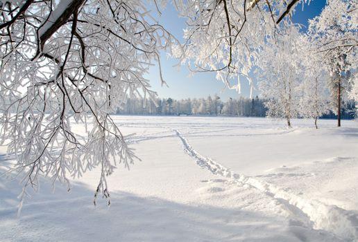 Фото бесплатно сугробы, лед, холодная зима