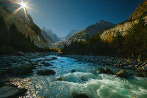 Фото бесплатно лес, ручей, небо