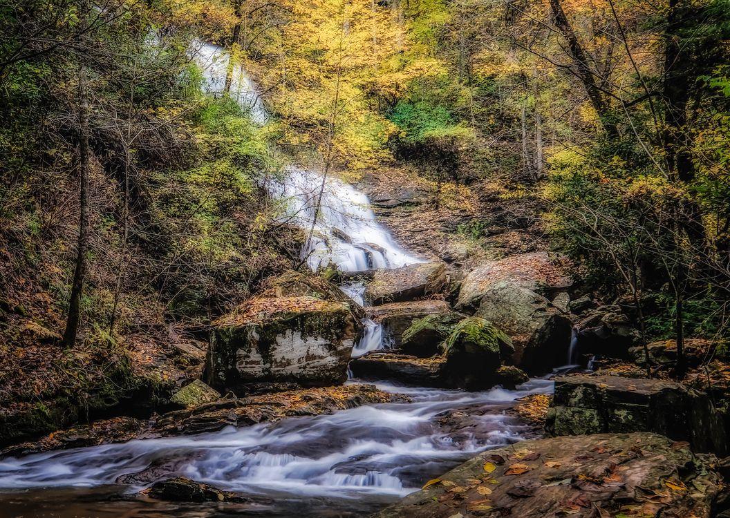 Обои на телефон осень, лес, водопад