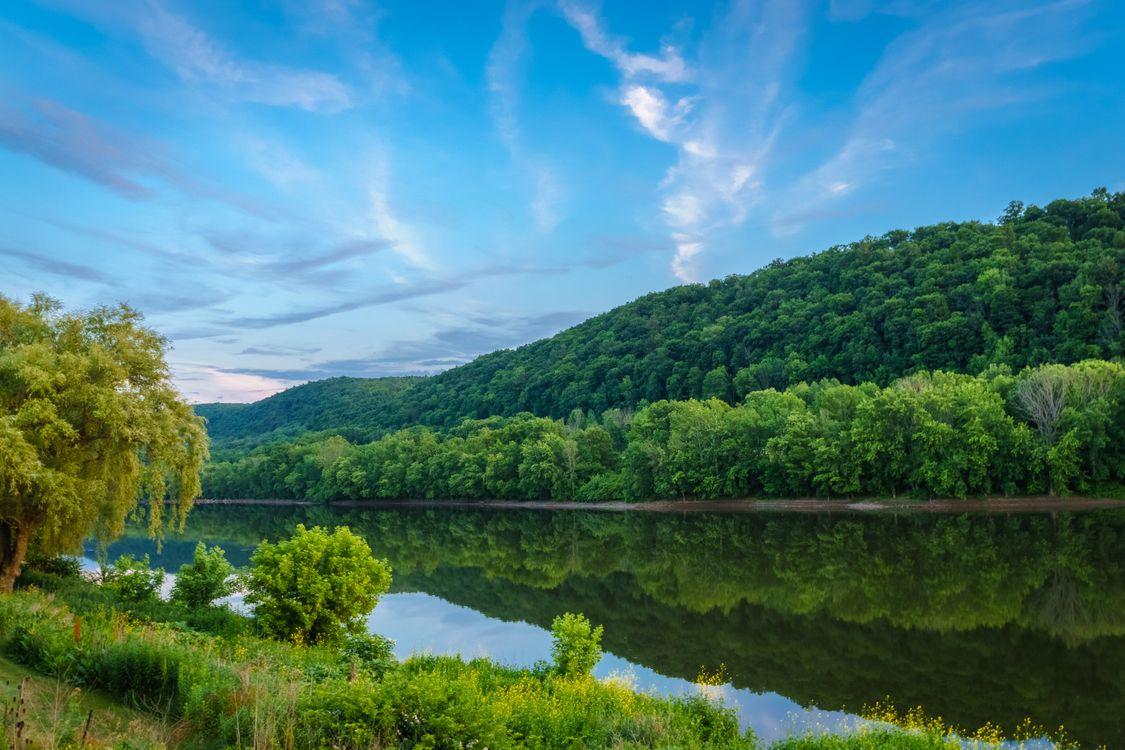 Фото бесплатно река Саскуэханна, штат Пенсильвания, США, река, лес, деревья, пейзаж, пейзажи