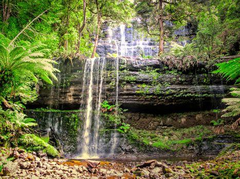 Фото бесплатно водопад, джунгли, Тасмания