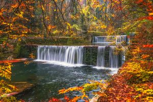 Фото бесплатно осенние листья, водопад, река