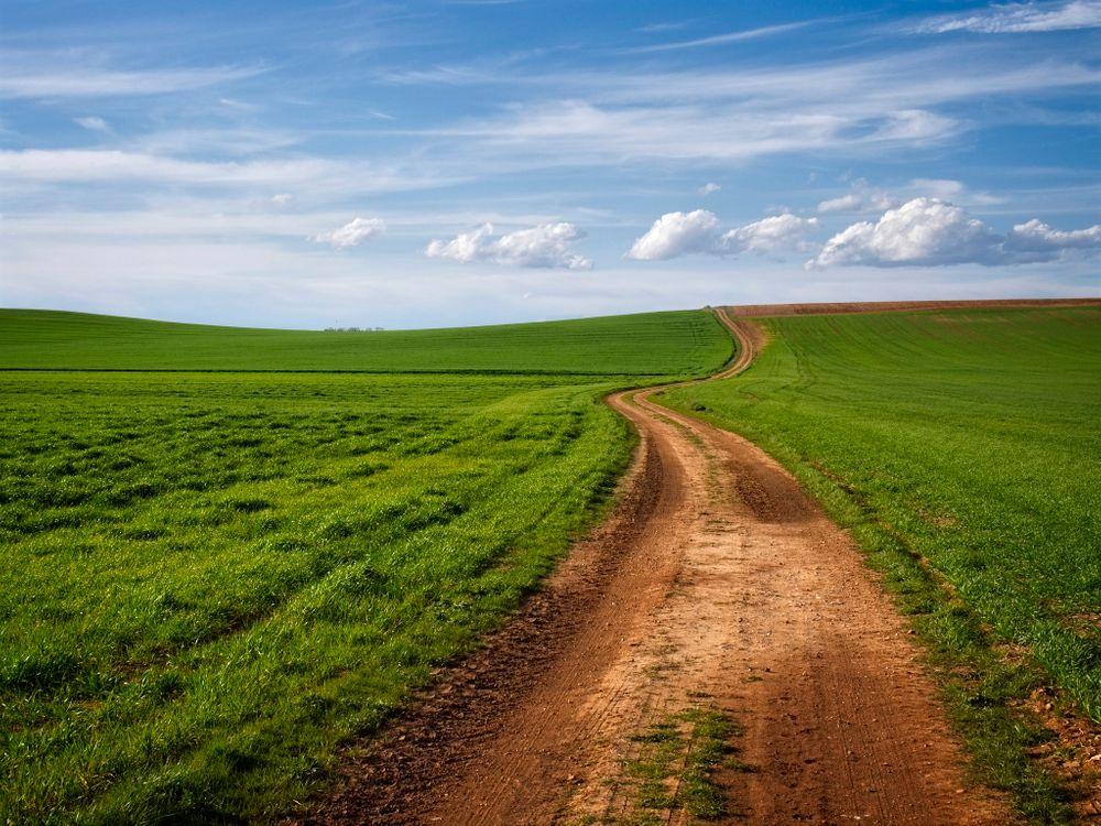 Фото бесплатно поле, дорога, трава, небо, облака, природа, пейзаж - на рабочий стол