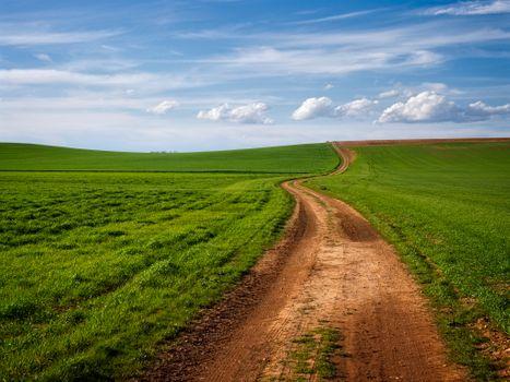 Заставки поле,дорога,трава,небо,облака,природа,пейзаж