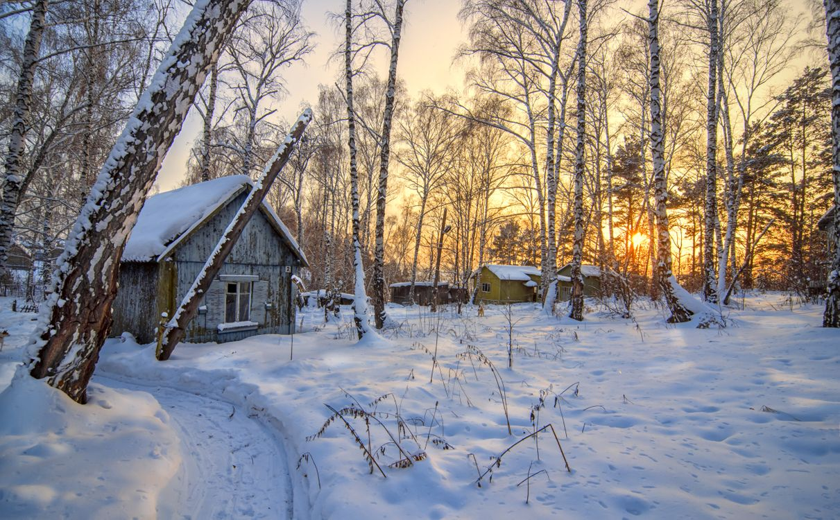 Фото бесплатно зима, домики, закат, лес, деревья, сугробы, снег, пейзаж, пейзажи