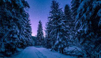 Заставки зима, сумерки, природа