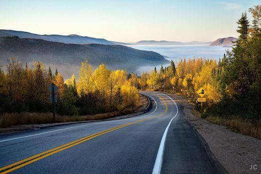 Фото бесплатно осень, извилистая дорога, лес