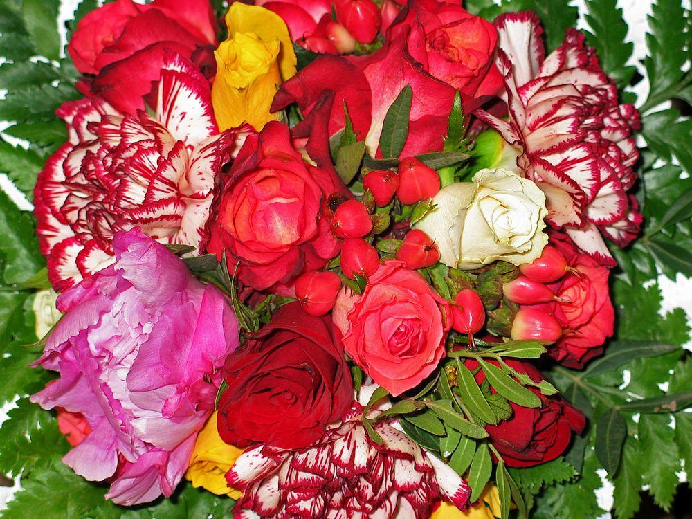 Фото бесплатно флора, букет, цветочные - на рабочий стол