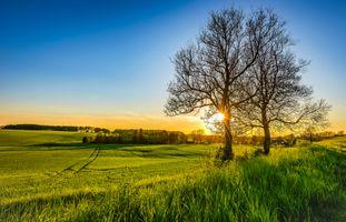 Фото бесплатно солнечный свет, поле, закат