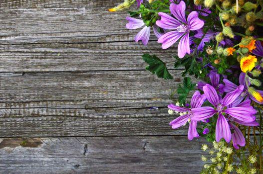 Бесплатные фото задний план,красивая,красоту,букет,цвет,красочный,украшение,флора,цветочный,цветок,цветы,свежий