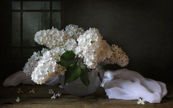 Photo free a bouquet of lilacs, a vase, lilacs
