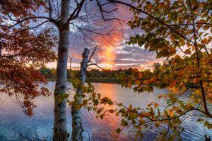 Бесплатные фото озеро,осень,закат,деревья,ветки,листья,природа