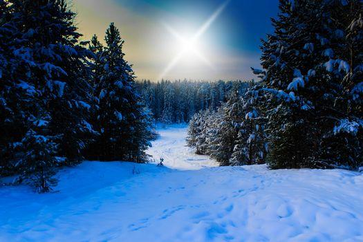 Фото бесплатно Russian Federation, зима, снег