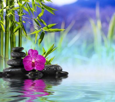 Бесплатные фото массаж,романтик,камни,бамбук,орхидея,цветок,макро