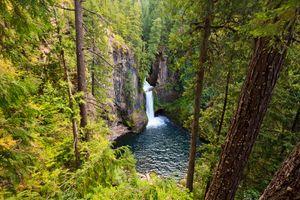Фото бесплатно пейзаж, водопад, лес