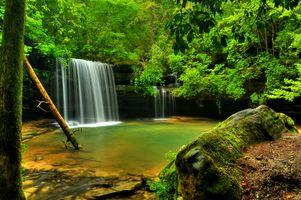 Фото бесплатно Caney Falls, уютное местечко в лесу, водопад