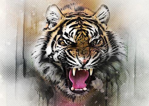 Бесплатные фото тигр,кошка,хищник,животные,опасный,природа,млекопитающее,кошачий,живая природа,дикая кошка,цифровой манипуляции,фото искусство