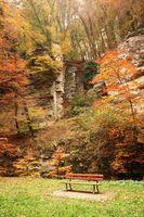 Фото бесплатно атмосфера, осень, скамейка