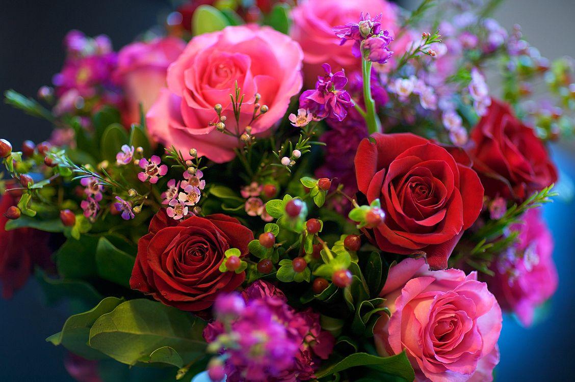 Фото букет роз букет цветов розы - бесплатные картинки на Fonwall