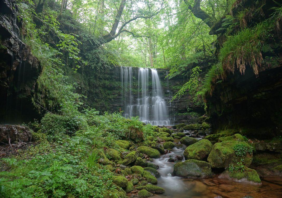 Фото бесплатно водопад, скалы, лес, деревья, камни, природа, пейзаж, пейзажи