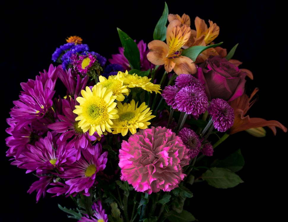 Цветы осени · бесплатное фото