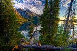 Заставки отражение, пейзаж, деревья