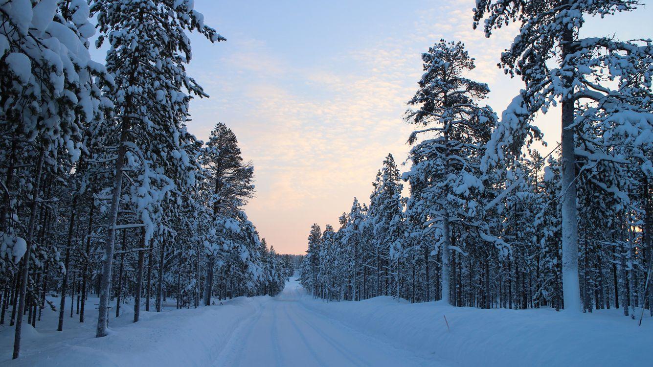 Фото бесплатно Лапландия, зимняя дорога, Арктика - на рабочий стол