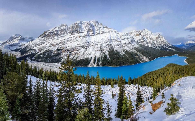 Обои Peyto Lake, Banff National Park, Alberta, Canada, озеро, горы, скалы, лес, деревья, пейзаж, Озеро Пейто, Национальный Парк Банф, Альберта, Канада на телефон | картинки пейзажи