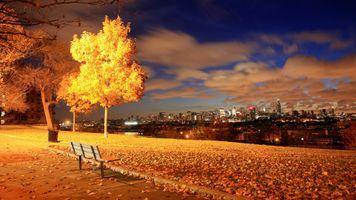 Фото бесплатно скамья, город, осень, сад, фонарь, листья, свет, природа, ночь, парк, почта, городской пейзаж, sutumn, деревья