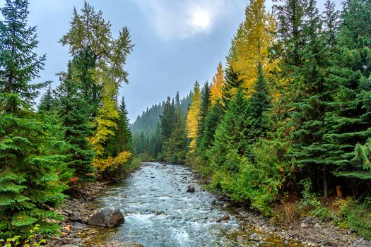Бесплатные фото Cayoosh Creek,Duffey Lake Road,British Columbia,Canada