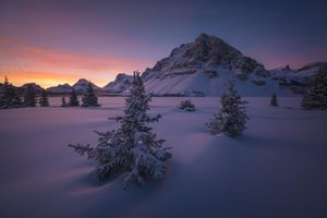 Бесплатные фото Bow Lake,зимний пейзаж,снегопад,гора,Alberta,Canada,зима