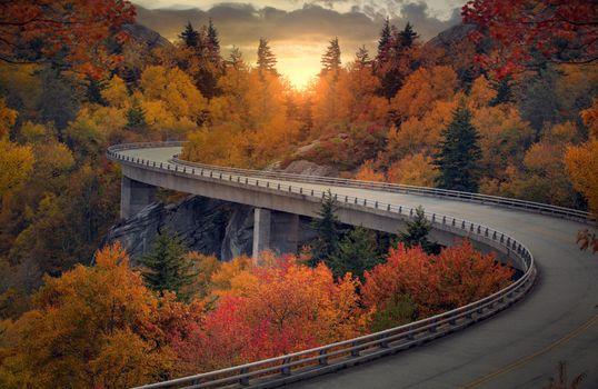 Бесплатные фото осень,дорога,автострада,шоссе,закат,лес,деревья,пейзаж