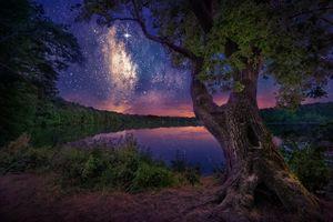 Бесплатные фото озеро,сумерки,ночь,свечение,деревья,природа,пейзаж