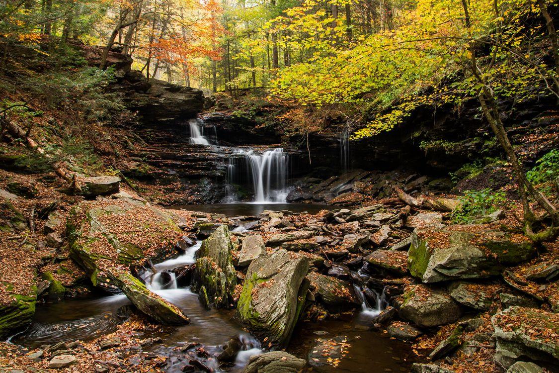 Обои осень, скалы, камни картинки на телефон