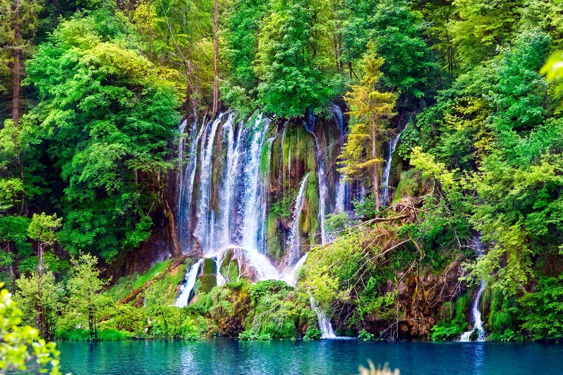 Обои Small lake, waterfall, лес, скалы, деревья, водопад, озеро, река, пейзаж на телефон | картинки пейзажи