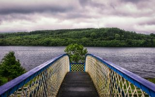 Bridge in the lake