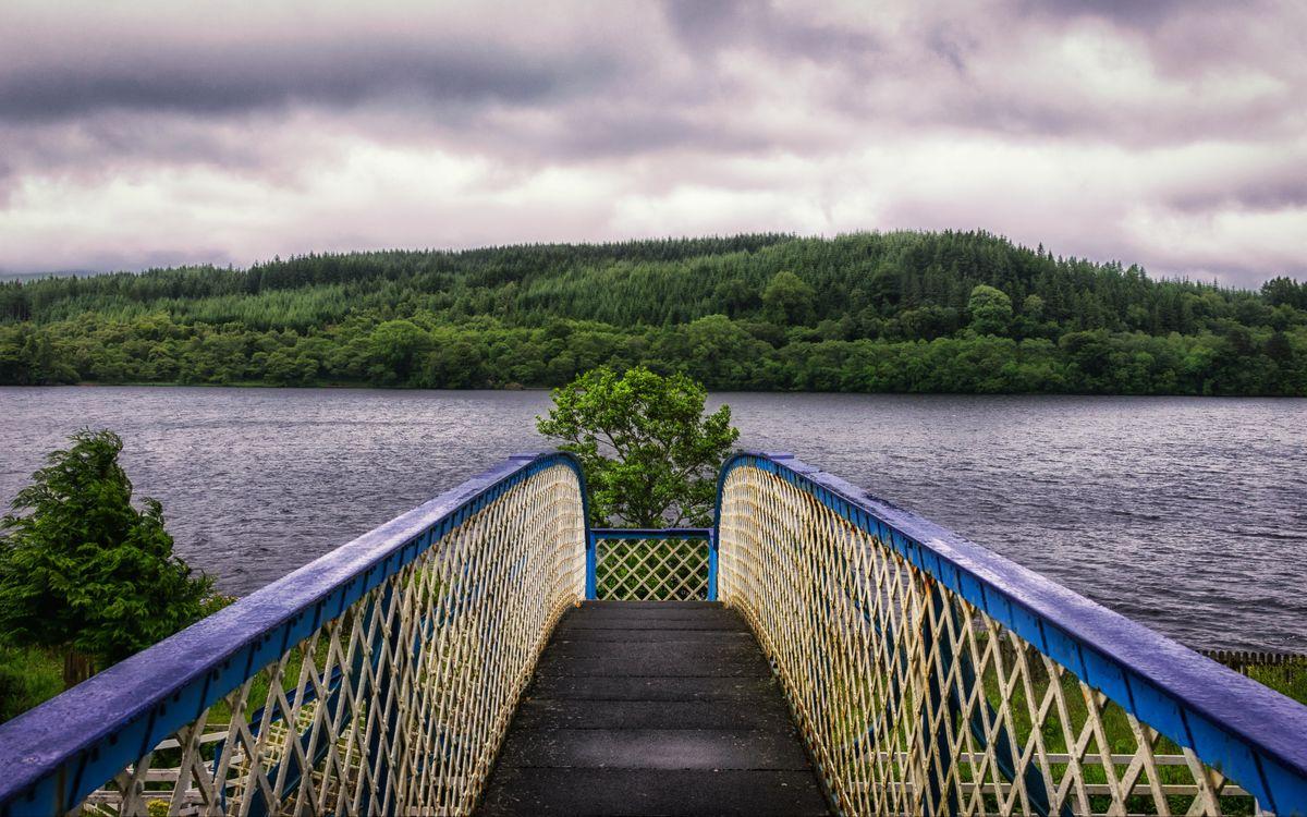 Bridge in the lake · бесплатное фото