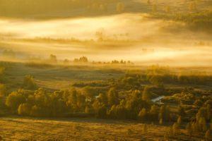 Утренний туман в Тигирекском заповеднике