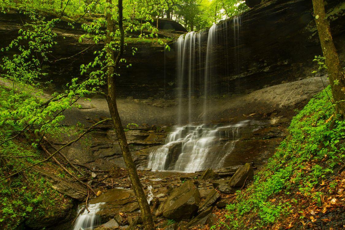 Обои водопад, лес, скалы, деревья, водоём, природа, поток, вода, камни, пейзаж на телефон | картинки пейзажи