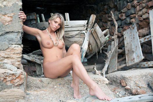 Бесплатные фото Denisa Brazdova,Danae,Gina Novak,Nicole,Tina Shannon,Heather Wild,красотка,голая,голая девушка,обнаженная девушка,позы,поза
