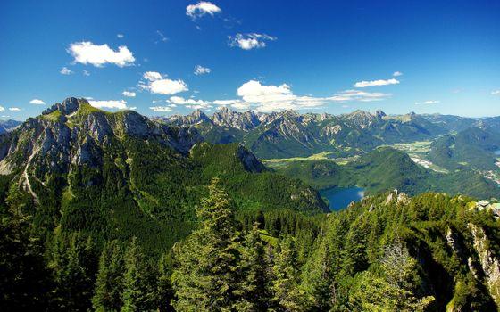 Фото бесплатно Альпы, лес, озеро