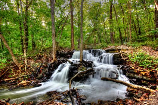 Photo free autumn stream, autumn, branch