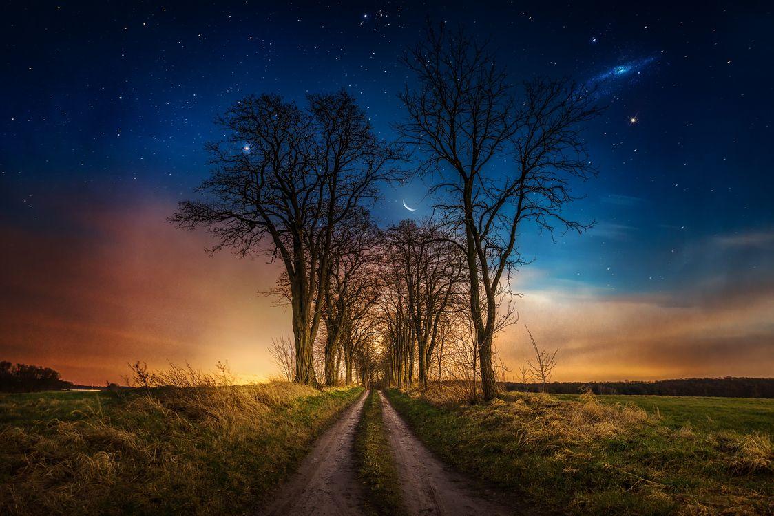 Фото бесплатно закат, поле, дорога, небо, деревья, пейзаж, пейзажи