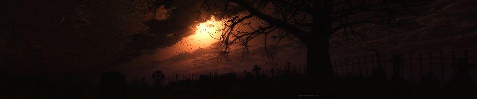 Фото бесплатно птицы, облака, пейзажи